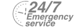 24/7 Emergency Service Pest Control in Purfleet, RM19. Call Now! 020 8166 9746