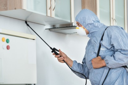 Home Pest Control, Pest Control in Purfleet, RM19. Call Now 020 8166 9746