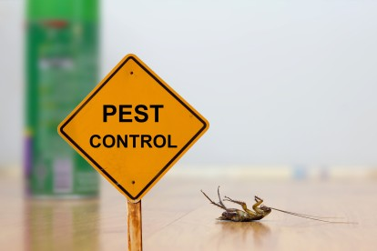 Pest Contol in Purfleet, RM19. Call Now 020 8166 9746